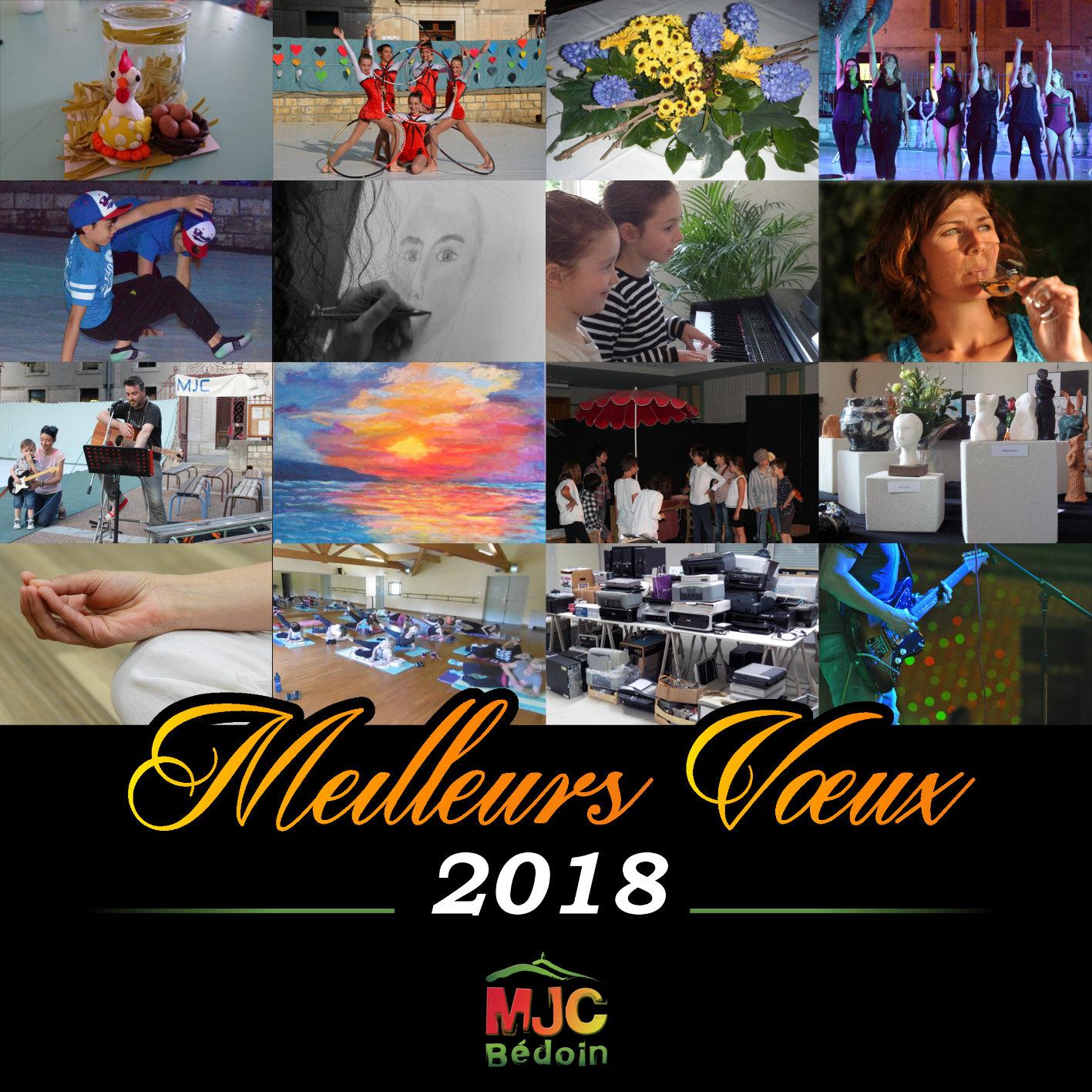 Voeux MJC 2018